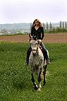 Junge Frau reitet Pferd