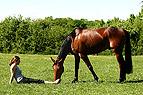 Junge Frau und Pferd