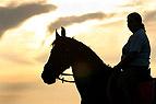 Frau und Pferd vor Sonne..