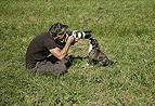 Tierfotograf und Hunde