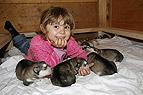 Kind mit Alaskan Malamut..