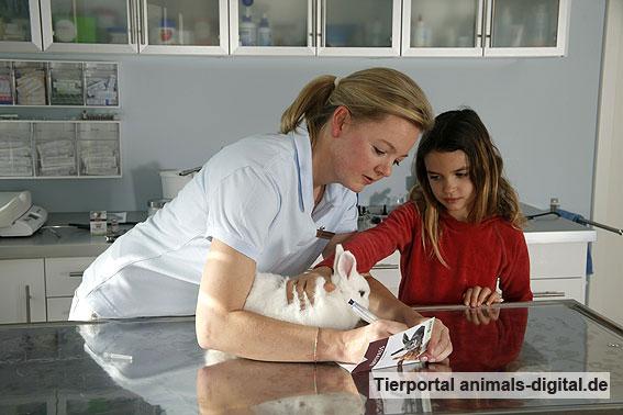 Impfpass - a-d2008_2948