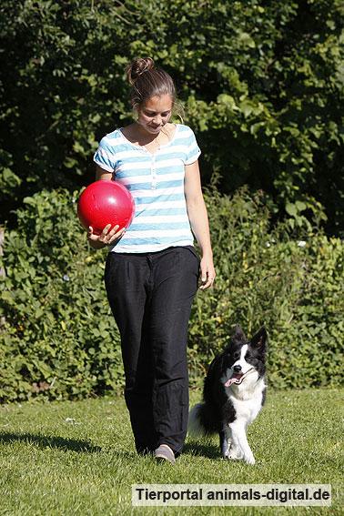 Ballspiele mit Hund - a-d2012_0549